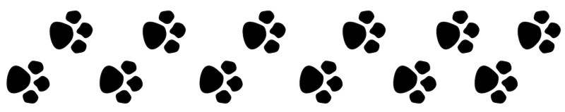 paw_prints_happy_pets_of_rutland_oakham_high_street